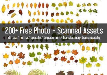 Free Photo-Scanned Textures | Wojciechpiwowarczyk