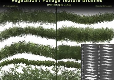 Vegetation – Foliage Textures Photoshop Brushes