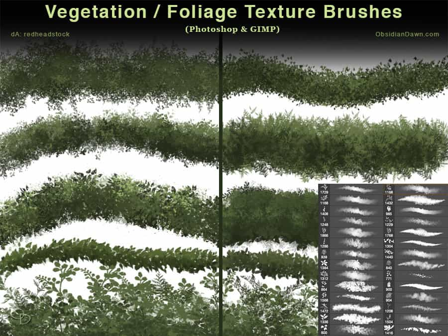 Vegetation - Foliage Textures Photoshop Brushes