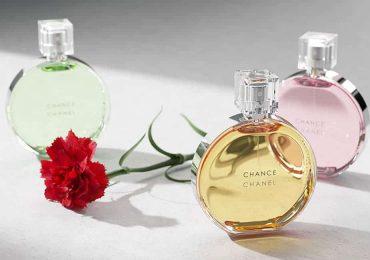 Free 3D Model – Perfumes | VizPeople Blog