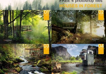 Free PSD-Houses in forest | B8Architect Studio
