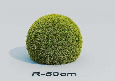Free 3D Model Cupreses ball | Farid Muradov