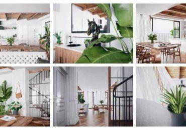 Free 3D Sketchup scene- Palm House | Darchviz Studio