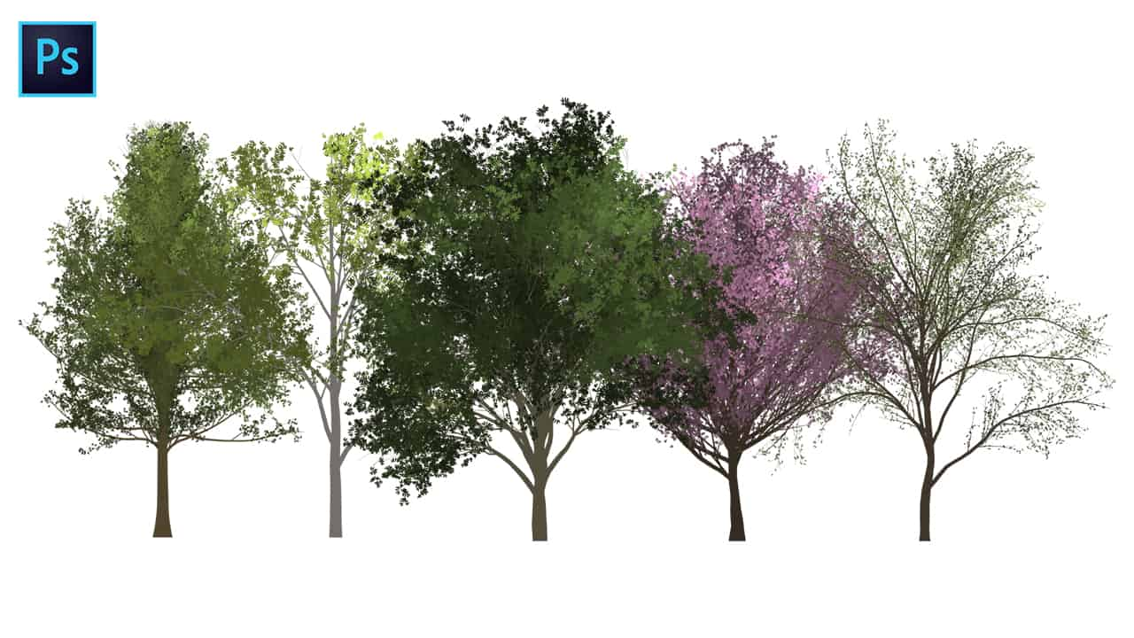 How To Create Trees In Photoshop Reid Southen