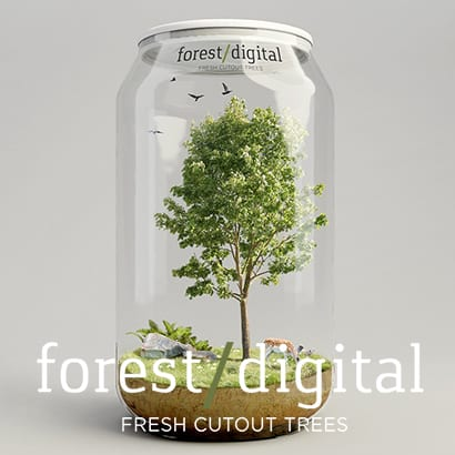 Forest Digital Banner 3