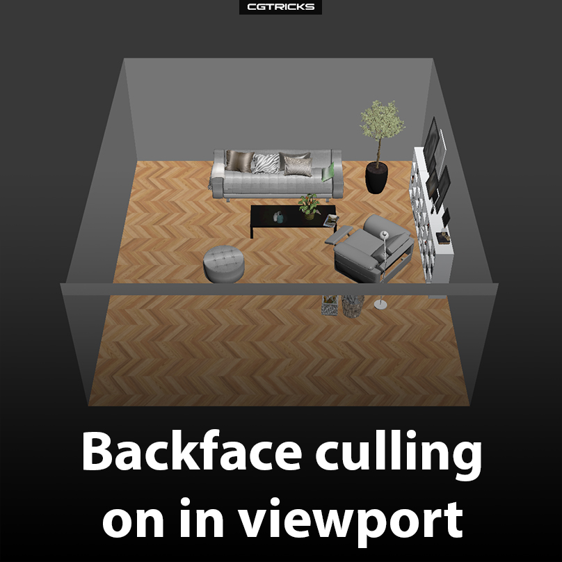 Backface culling on in viewport