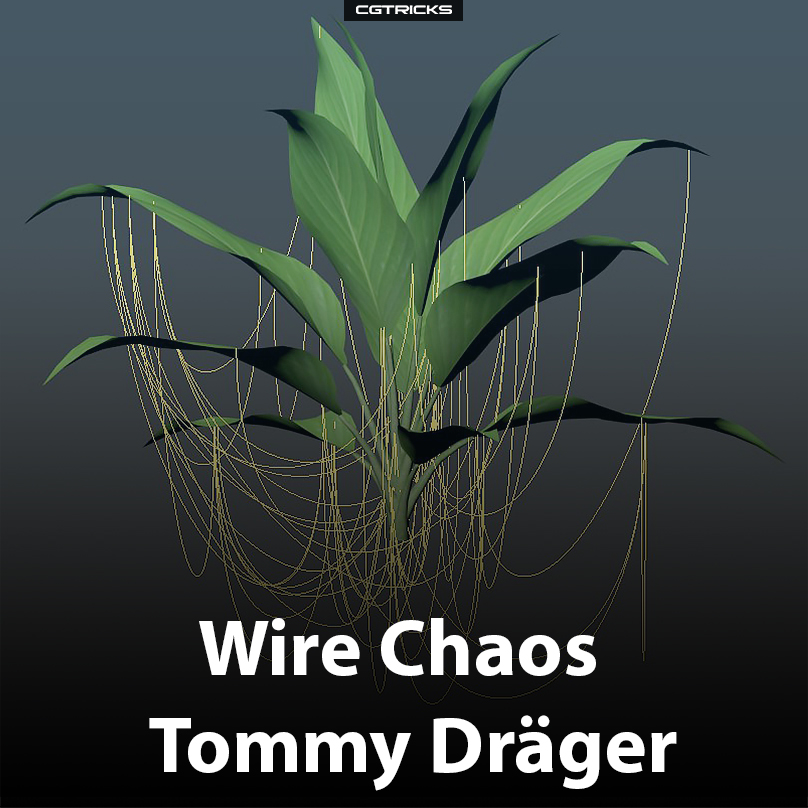 Wire Chaos | Tommy Dräger